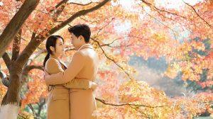 Loạt phim truyền hình Hoa ngữ đang được người hâm mộ ngóng chờ