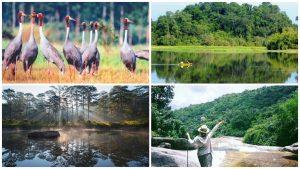Những vườn quốc gia đẹp nhất Việt Nam đốn tim khách du lịch hè 2018 (phần 1)