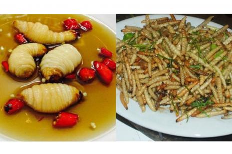 Bạn có biết đây là những món đặc sản độc đáo chỉ có ở Việt Nam
