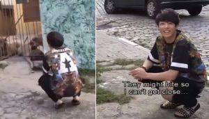 Jungkook sợ chó và biểu cảm khiến fan chết chìm
