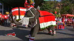 Thái Lan: Ông già noel cưỡi voi phát quà giáng sinh