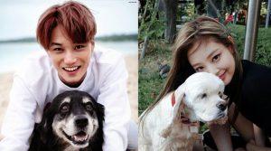 7 lý do khiến Kai và Jennie trở thành cặp đôi hoàn hảo