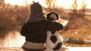 Cậu bé 6 tuổi lý giải về lý do chó sống ít hơn người khiến cộng đồng mạng cảm động