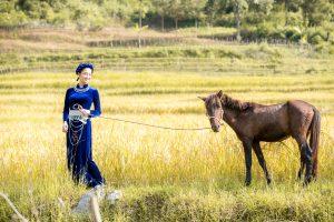 Trang chủ Miss World đăng tải clip tự giới thiệu Lương Thùy Linh đẹp như thiên thần, bắn tiếng anh chuẩn quốc tế