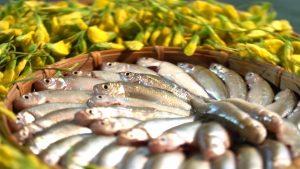 Khám phá ẩm thực thú vị ở Điền Lan Thôn Trang