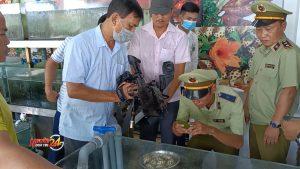 Đóng cửa tạm thời nhà hàng ở Nha Trang bị tố bán hải sản giá cao